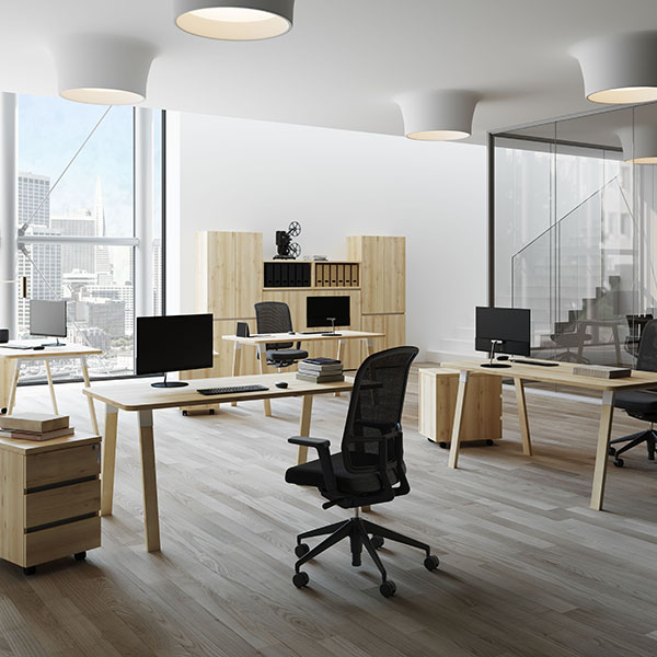OFFICE RENDER